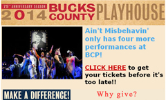 Bucks County Playhouse email
